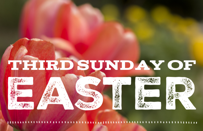 Bulletin – Third Sunday of Easter, April 26th, 2020